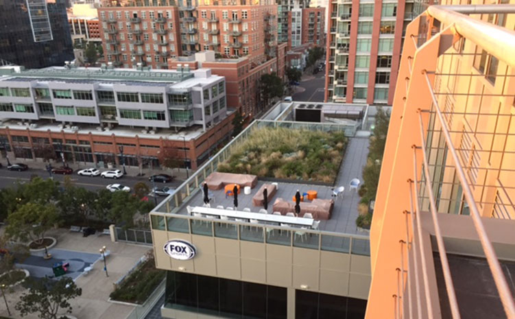 Roof top garden next door to CBRE